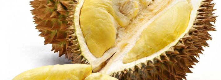 Durian 3